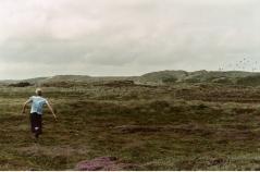 Hvide Sande II, Jutland